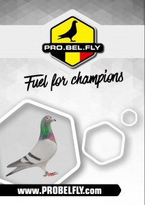 folder-probelfly-fuel-for-champions