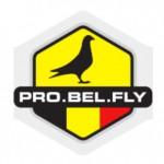 logo-probelfly